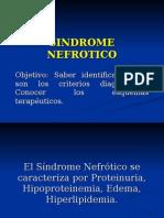 Sindrome Nefrotico y Nefritico 1208718419969943 9