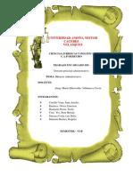 Silencio Administrativo pdf