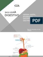 patologa del sistema digestivo