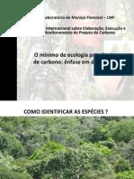 TARDE Ecologia e Dendrologia