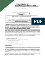 DIAGNÓSTICO URBANO Estructura Urbana