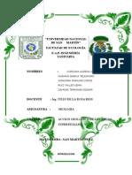 Imprimir Informe de Geologia