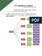teorias_desarrollo.doc