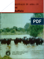 Water Buffalo in Asia - (Www.gkambiz.blogfa.com)