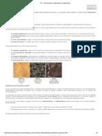 Rocas Denominación, Clasificación y Características