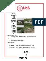Diagnostico Pantanos de Vill Maria - Copia