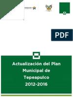 TEPEAPULCO APMD