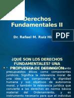 Derechos Fundamentales II