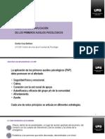 V1_3-Objetivos de La Aplicación de Los PAP