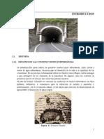 OFICIAL.TUNELES-proyecto1.docx