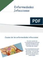 Anatomia enfermedades infecciosas