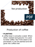 cofee production and typesofcoffee-1