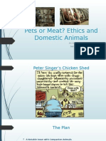 Animals Domestic 249