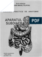 Aparatul Digestiv Subdiafragmatic Si Spl