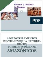 cultura amazonica