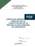 Analisis de La Constitucion y El Ambiente