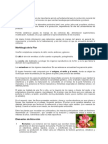 Flora Apícola.docx