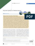yang_enzymatic_hydrolysis.pdf
