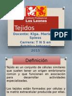 Tejidos Los Leones 2015