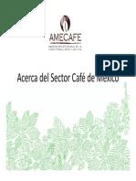 Acerca Del Sector Café de México