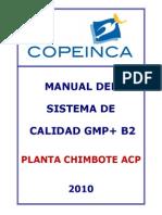 Manual GMP + B2 Chimbote ACP 15.11.2010