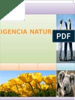 Imteligencia Naturalista