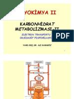 2008 2009+Biyokimya+II+Karbonhidrat+Met+2
