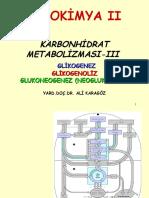 2008 2009+Biyokimya+II+Karbonhidrat+Met+3