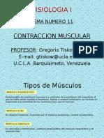 tema11 - copia.pps