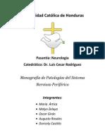 Monografia Patologias Del Sistema Nervioso Periferico