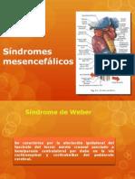 Síndromes mesencefálicos