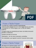 Pulpa (1).ppt