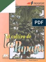 136980275 El Cultivo de La Papaya