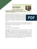 O tomateiro.pdf