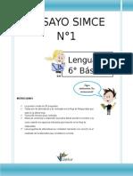 ensayosimcenlenguajesexto-140526203550-phpapp02