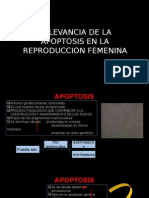 RELEVANCIA DE LA APOPTOSIS EN LA REPRODUCCION FEMENINA.pptx