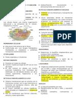 Resumen Citología, Estructura y Función Celular