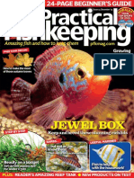 Practical Fish Keeping December 2015
