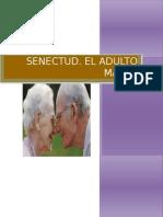 Psicologia de La Adultez y Senectud