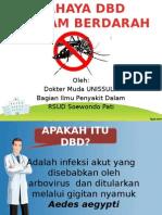Dbd Slide Penyuluhan