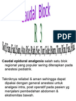 Caudal Block R3