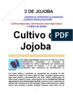 Cultivo de Jojoba