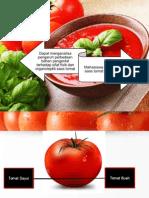 Sauces Tomato 2