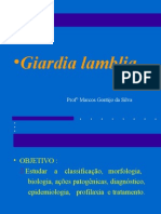 aula3-giardialamblia-090628215649-phpapp01.ppt
