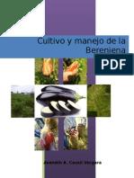 Cultivo de Berenjena