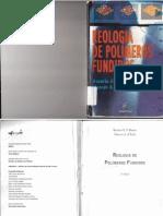 Reologia de Polimeros Fundidos - Rosário
