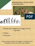 12.- Origen de Las Especies y Evidencias de Evolucion 2014