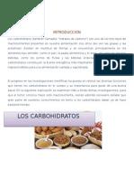 CARBOHIDRATOS NUTRICION