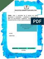 monografiachanchosIMPRIMIR1 (Autoguardado)