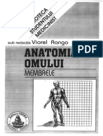 205770359 Anatomia Omului Membrele Viorel Ranga
